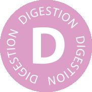 Digestion (Horses)
